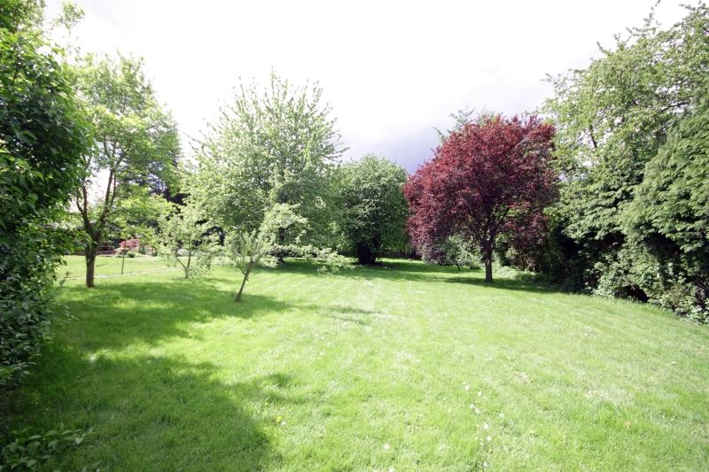 Gartenabsicht 4